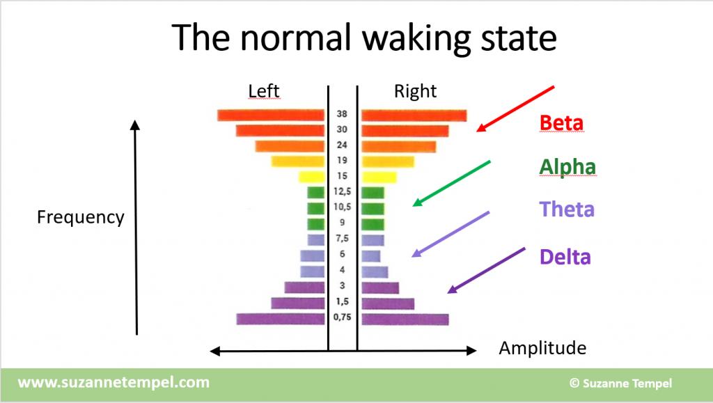 Normal Waking State Brain Waves